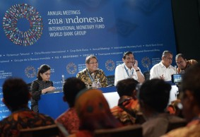 Learning from the Success Story of the IMF-WBG AM 2018