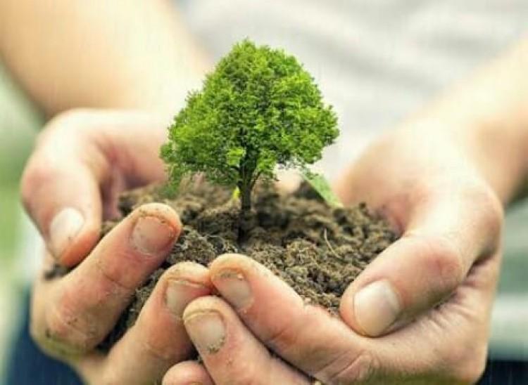 Kolaborasi Mengampanyekan Isu Lingkungan